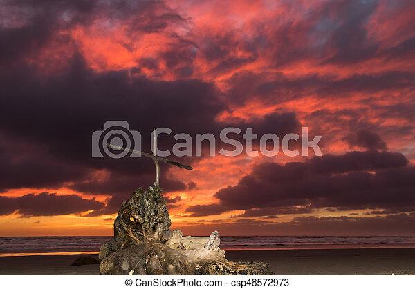 Storm Beach Salvation - csp48572973