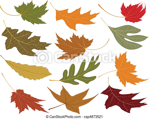 Wind blown fall leaves - csp4873521