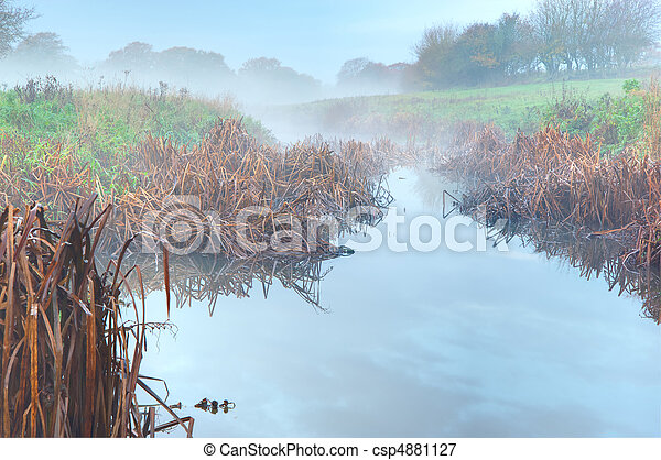 Autumn Misty Field Scene - csp4881127