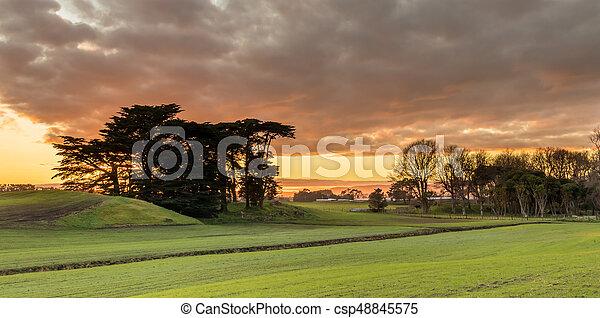 New Zealand Farmland Winter - csp48845575