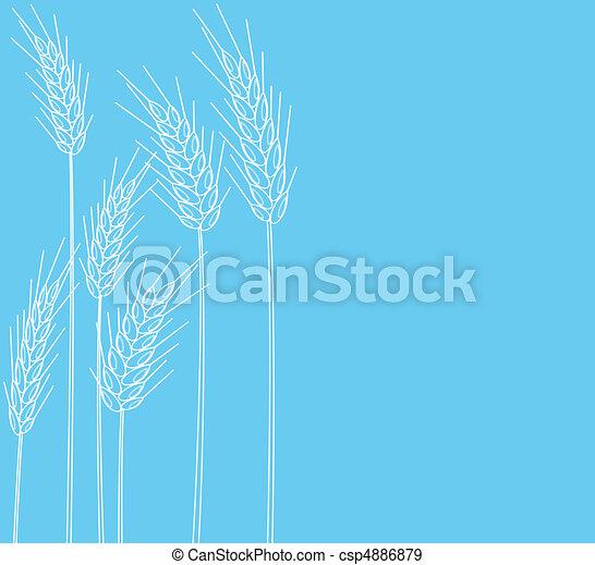cones of wheat - csp4886879