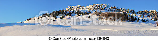 Snow fields - csp4894843