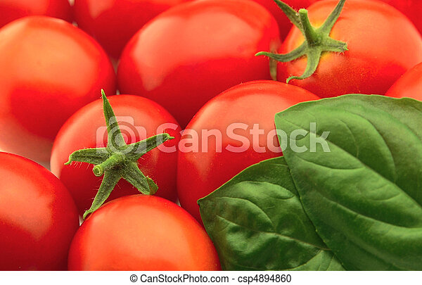 Tomatoes and a basil - csp4894860