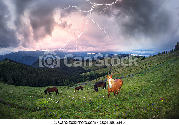 Over the village Verkhovyna Ivano-Frankivsk region in the mountains of Chernogora graze free horses of Ukrainian mountaineers - Hutsul. A thunder storm is coming with lightning thunder