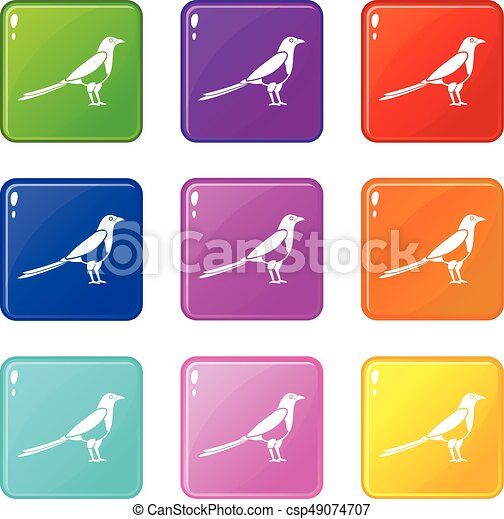 Bird magpie icons 9 set - csp49074707