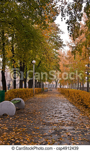 Autumn Park. Alley with yellow trees and fallen leaves. Fall - csp4912439