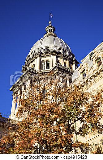 Springfield, Illinois - State Capitol - csp4915428