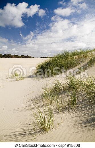Large coastal sand dunes - csp4915808