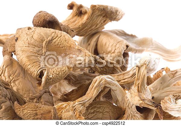 Dried Edible Mushrooms - csp4922512