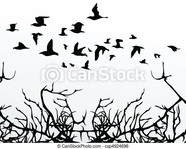 The flight of birds flies over wood. A vector illustration - csp4924696