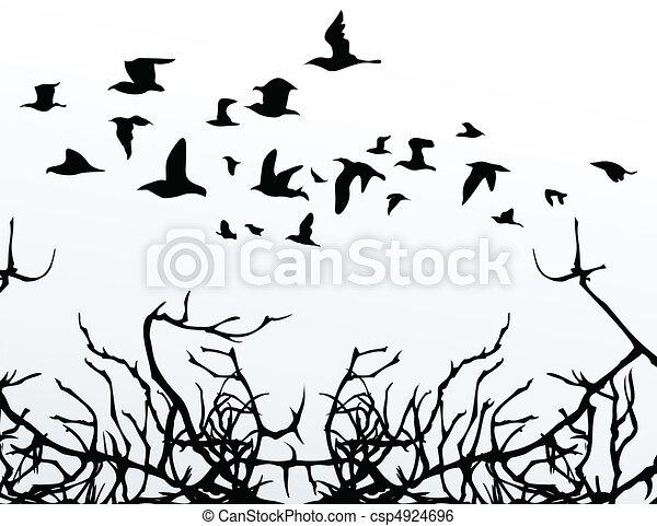 The flight of birds flies over wood. A vector illustration - csp4924696