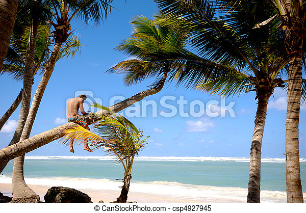 Man sitting on palm