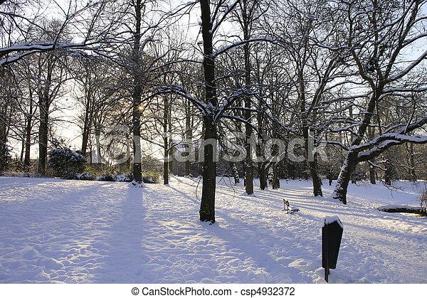 Snowcovered landscape - csp4932372