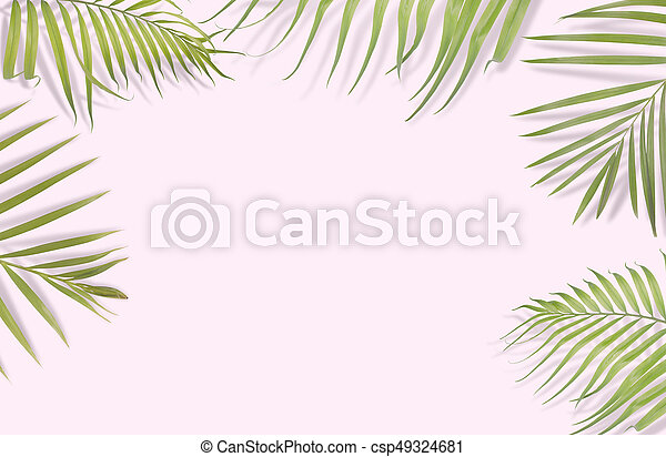 Tropical palm leaves on pink background. Minimal nature. Summer Styled. Flat lay. Image is approximately 5500 x 3600 pixels in size.