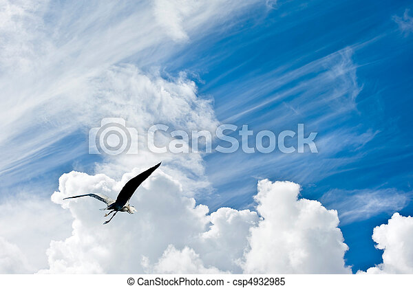 Beautiful blue sky with diagonal cloud formations and bird in flight giving concept of freedom - csp4932985