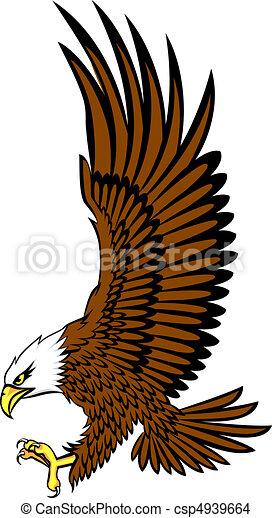 bald eagle vector - csp4939664