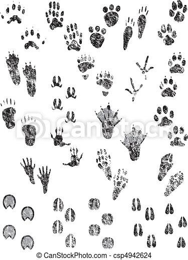 Grunge Animal Tracks - csp4942624