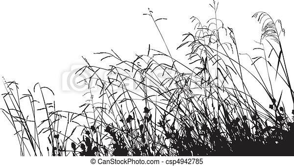 Meadow Grass Silhouette - csp4942785