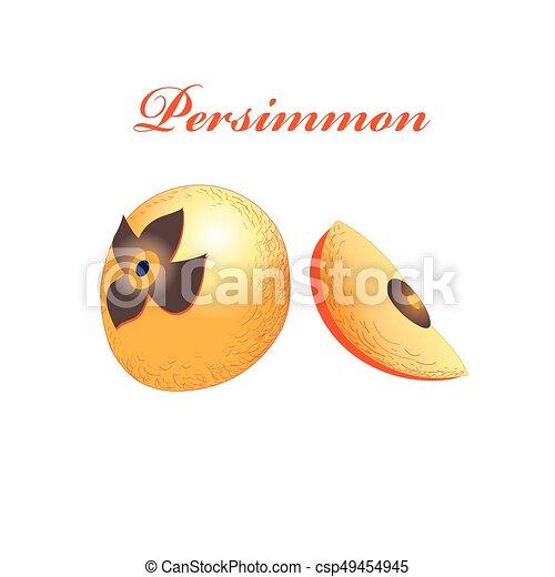 Vector orange sweet persimmon - csp49454945