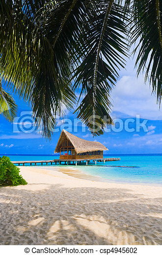 Diving club on a tropical island - csp4945602