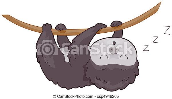 Sloth - csp4946205