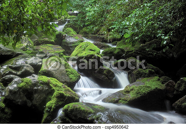 naturaleza, vista - csp4950642