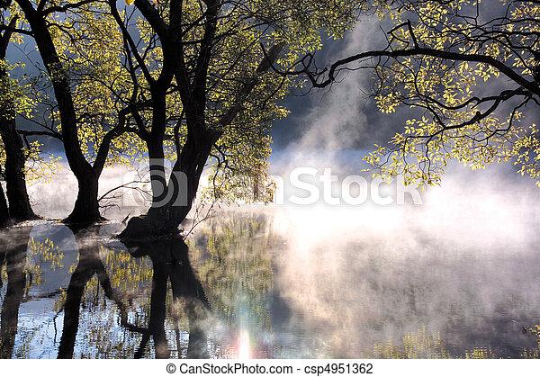 Natur, Ansicht - csp4951362