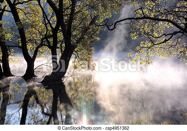 natureza, vista - csp4951362