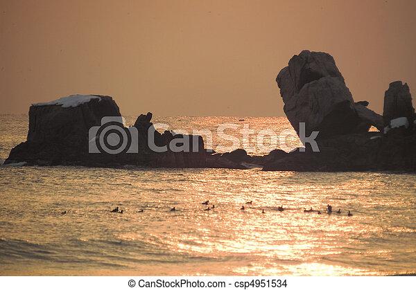 natureza, vista - csp4951534