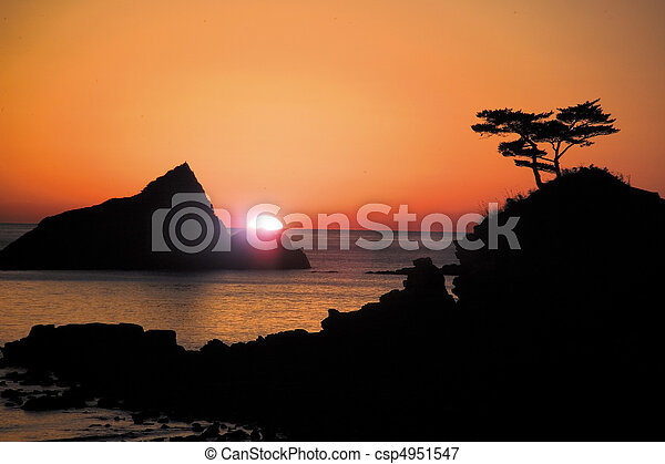 Natur, Ansicht - csp4951547