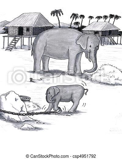 Elephants Held Captive - csp4951792