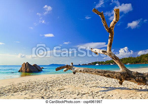 Beach Anse Lazio at island Praslin, Seychelles - csp4961997