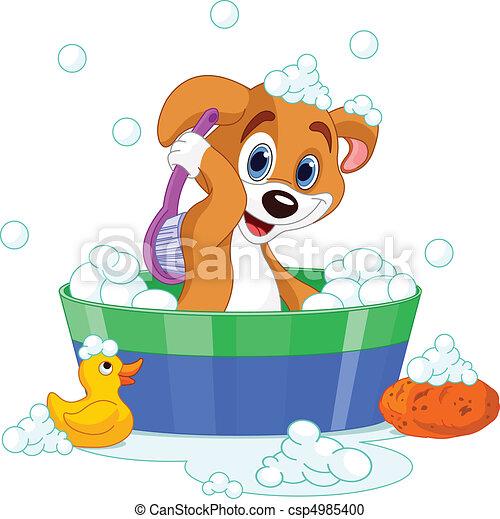 Dog having a  bath - csp4985400