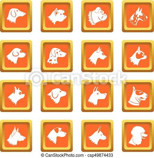 Dog icons set orange - csp49874433