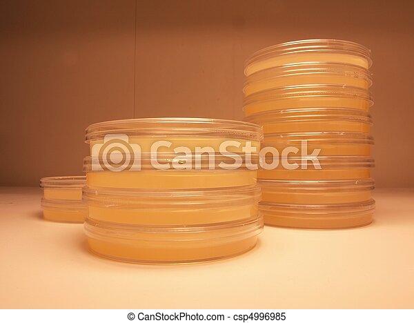 Clinical agar test plates - csp4996985