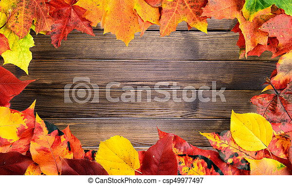 Fall leaves frame red yellow green colors