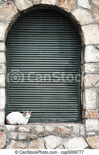 White Cat Relaxes on Stone Window Sill, Delphi, Greece - csp5009777