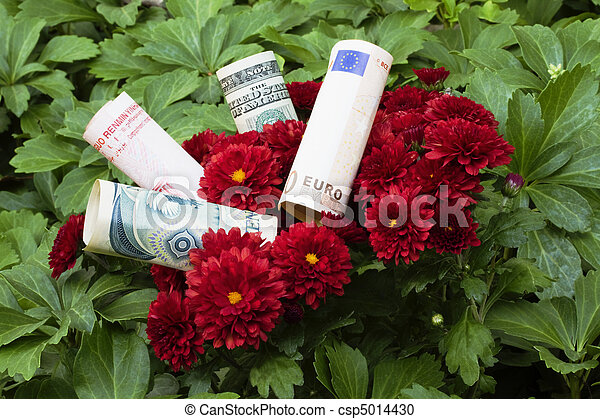 Diversified Financial Blossoms - csp5014430