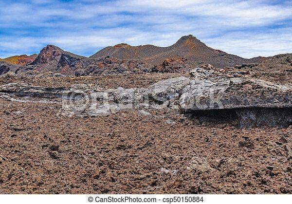 Sierra Negra Volcano, Galapagos, Ecuador - csp50150884