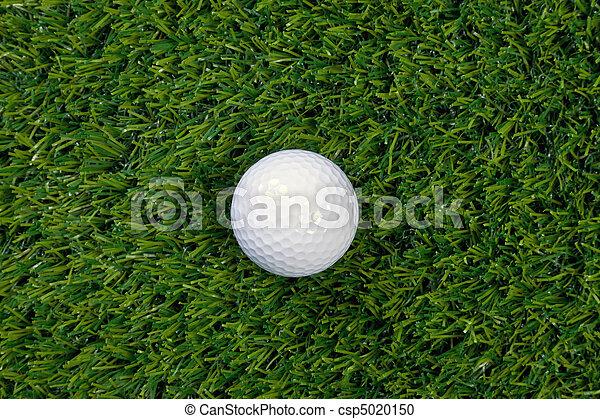 Golf ball on grass - csp5020150