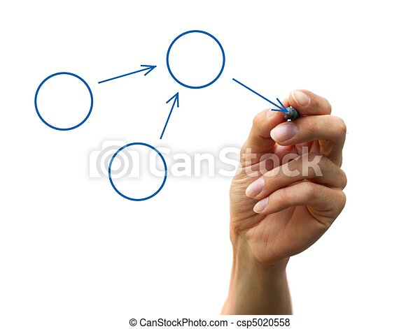 organization chart - csp5020558