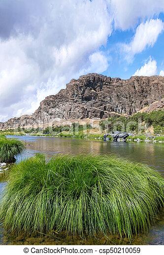 John Day River Landscape in Summer Portrait - csp50210059