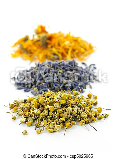 Dried medicinal herbs - csp5025965
