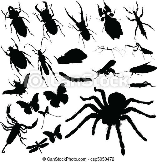 insect group vector silhouettes - csp5050472