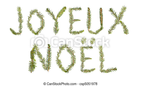 Spruce twigs forming the phrase 'Joyeux Noel' - csp5051978