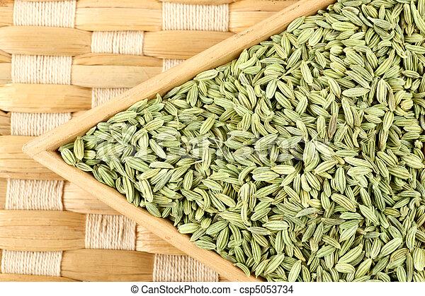 fennel seeds - csp5053734