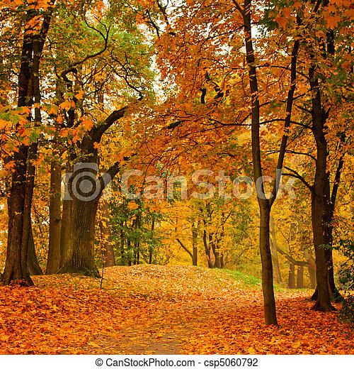 otoño, Valle - csp5060792