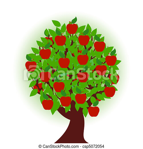 apple tree on white background - csp5072054