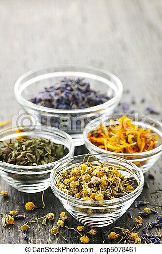 Dried medicinal herbs - csp5078461