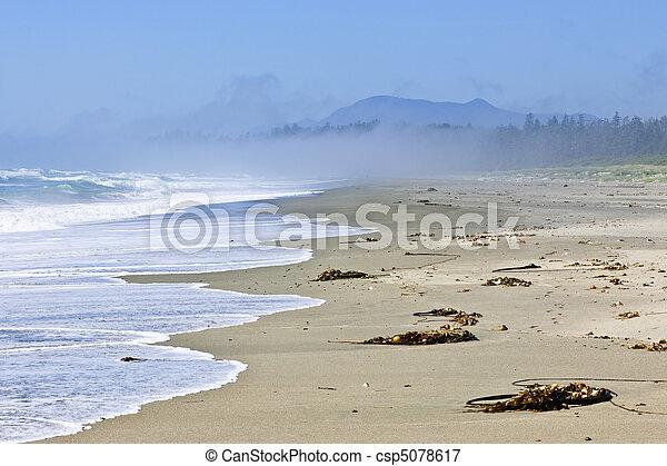 Coast of Pacific ocean in Canada - csp5078617
